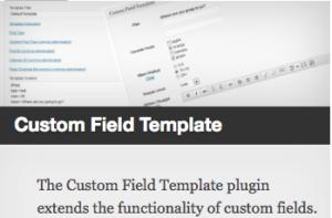 the-custom-field-template