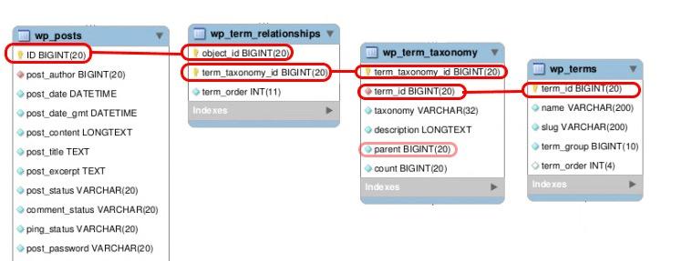 taxonomy-relation