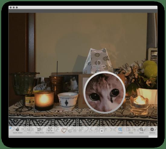 PhotoSupreme LiteEdition preview window